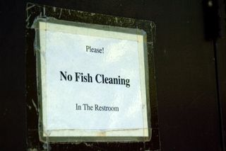 Fishcleaning