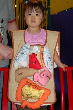 Organs1